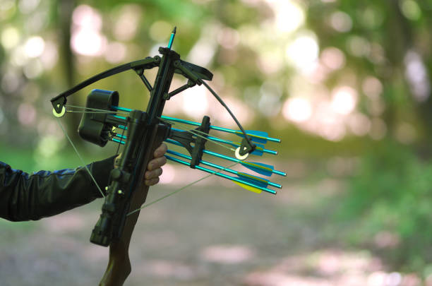 hand holding crossbow, in the nature - crossbow stock pictures, royalty-free photos & images