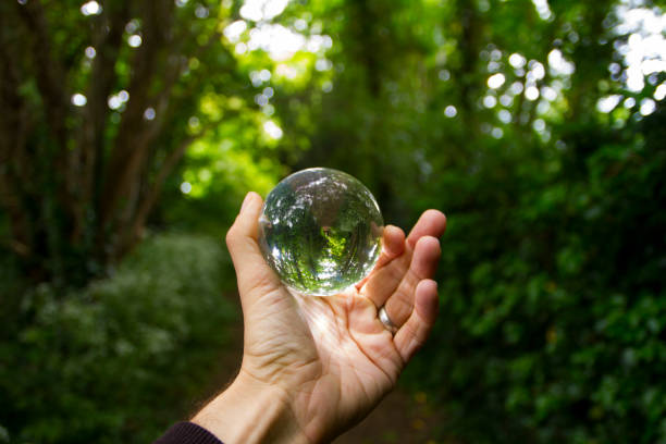 Hand holding crystal ball in forest stock photo