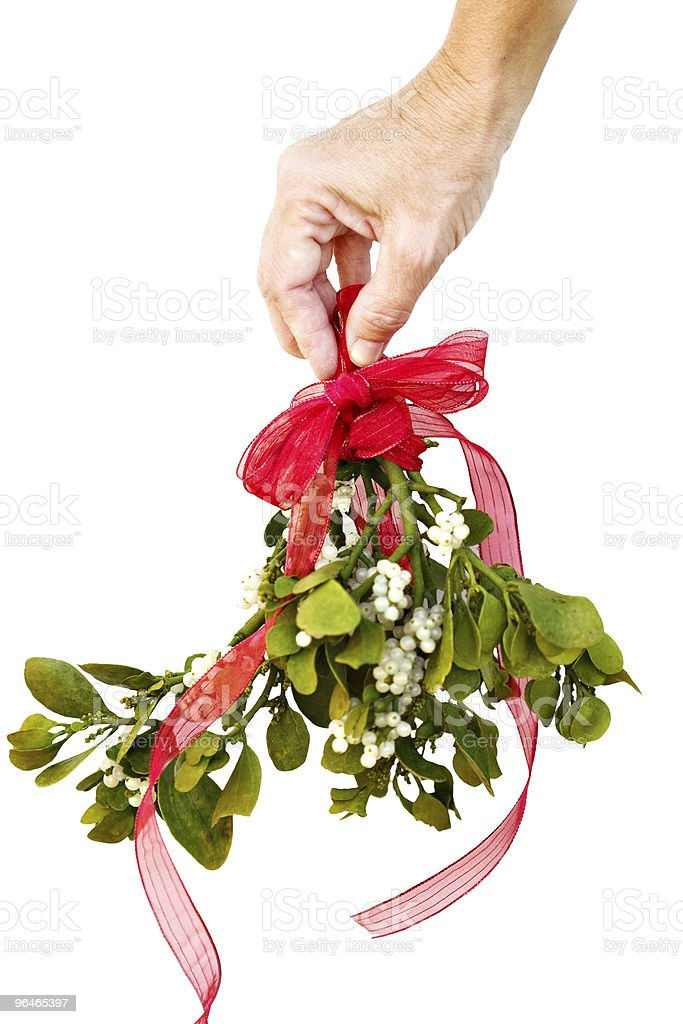 Hand holding fresh mistletoe stock photo
