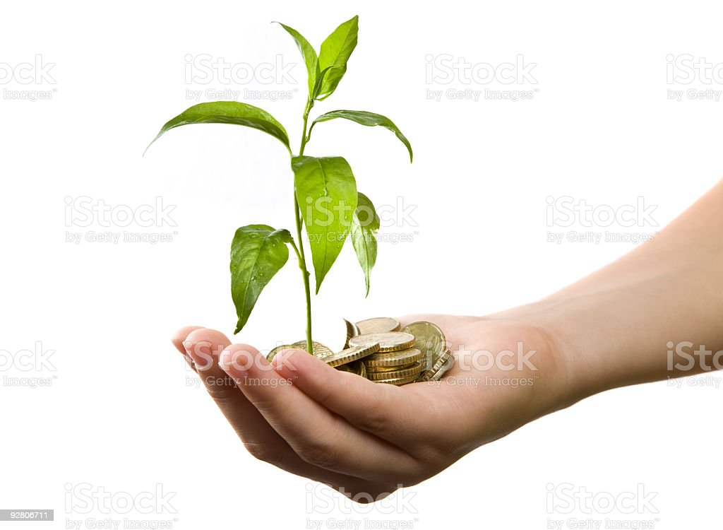 Hand holding golden coins and a small green plant stock photo