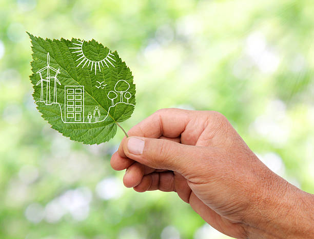 hand holding Green city concept, cut the leaves of plants stock photo