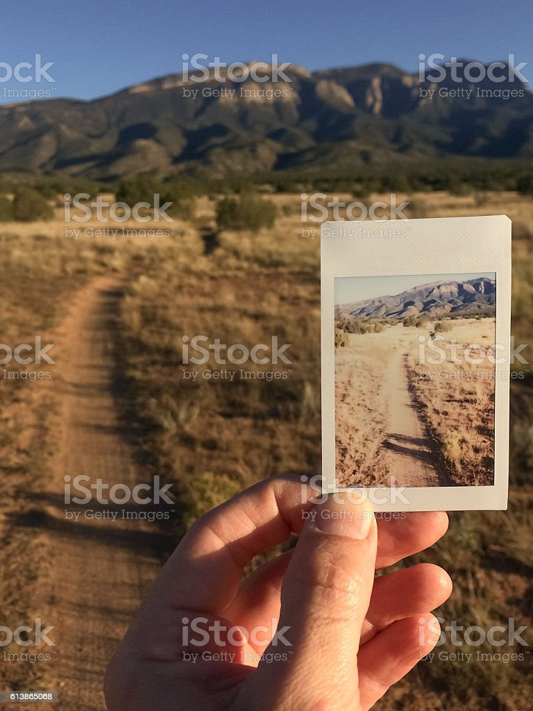 best hand holding polaroid stock photos  pictures