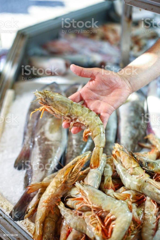 Hand Holding Jumbo Shrimp at Seafood Market stock photo