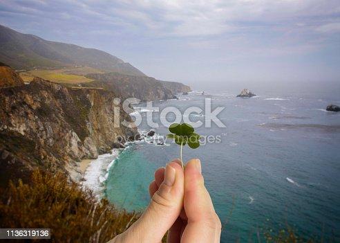 Hand holding leaf clover. Irish cliffs background.