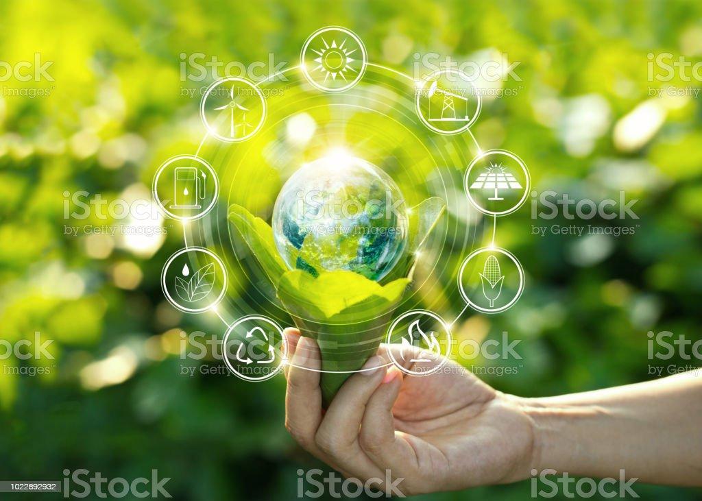 손을 잡고 전구 아이콘으로 녹색 잎에 자연에 대 한 재생, 지속 가능한 개발을 위한 에너지 원. 생태 개념입니다. NASA에서 제공 하는이 이미지의 요소입니다. - 로열티 프리 개념 스톡 사진