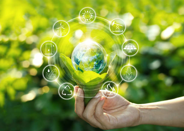 Hand holding light bulb against nature on green leaf with icons energy sources for renewable, sustainable development. Ecology concept. Elements of this image furnished by NASA. stock photo