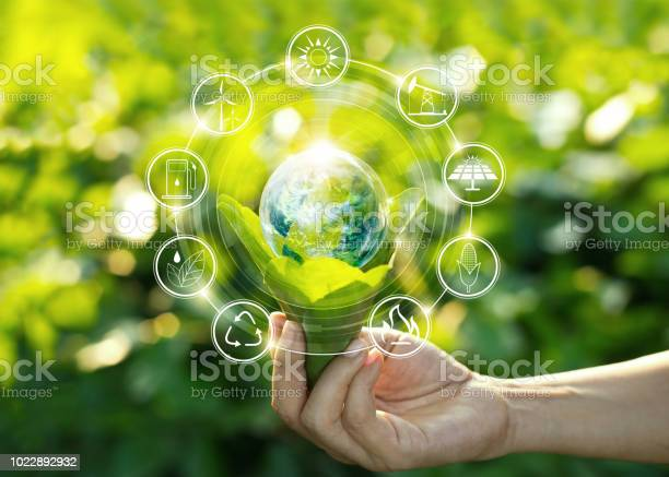 Photo of Hand holding light bulb against nature on green leaf with icons energy sources for renewable, sustainable development. Ecology concept. Elements of this image furnished by NASA.