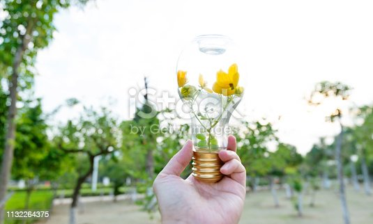 Hand holding light bulb with flower.