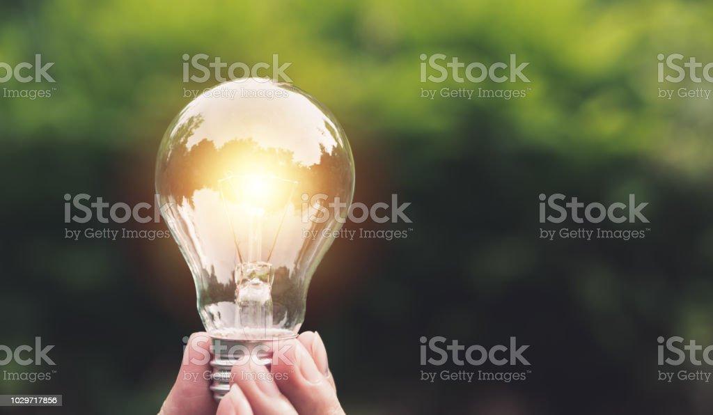 Hand, die Glühbirnen mit glühenden auf Natur Hintergrund. Idee, Kreativität und Energie sparen mit Glühbirnen Konzept. – Foto