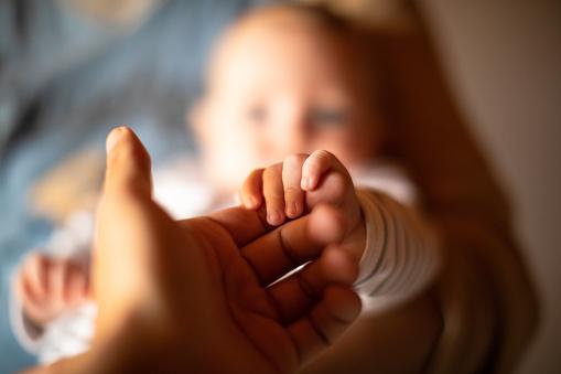 Hand holding newborn baby's hand