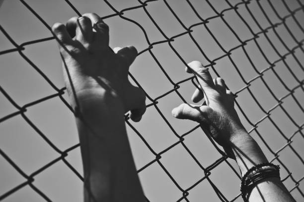 Hand holding on a chain link fence stock photo