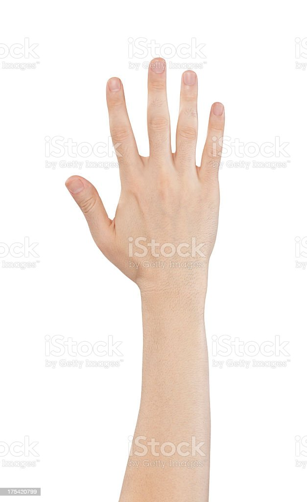 Hand holding out five fingers isolated on a white background stock photo