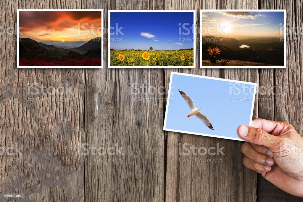 Hand holding photos on vintage grunge wooden background photo libre de droits