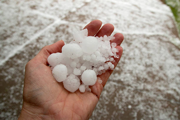 Hand holding quarter sized hail stones Denver Colorado stock photo