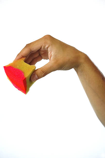 Hand Holding Red Painted Yellow Sponge Isolated On White stock photo