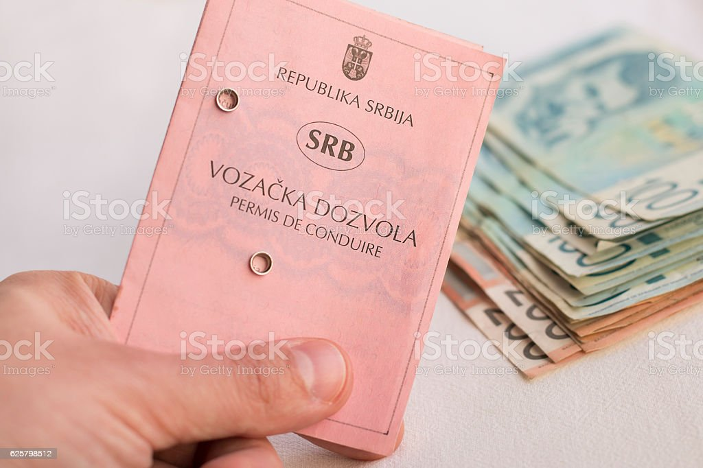 Hand holding Serbian driving license, money in background stock photo