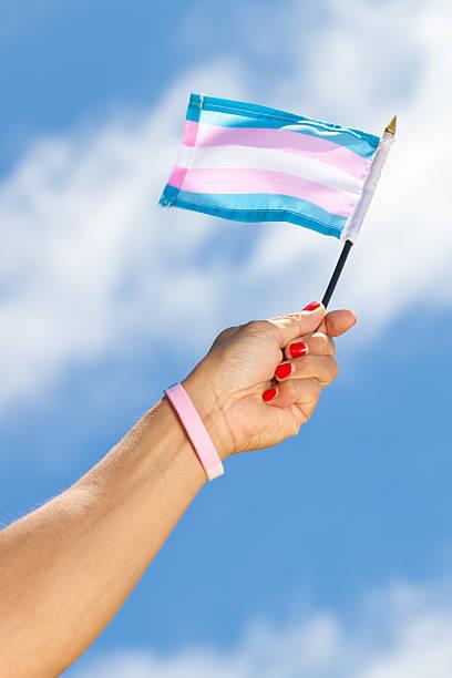Hand holding Transgender Pride flag stock photo