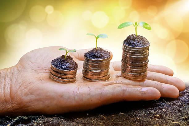 Hand holding Bäume, die auf Stapel von Münzen – Foto