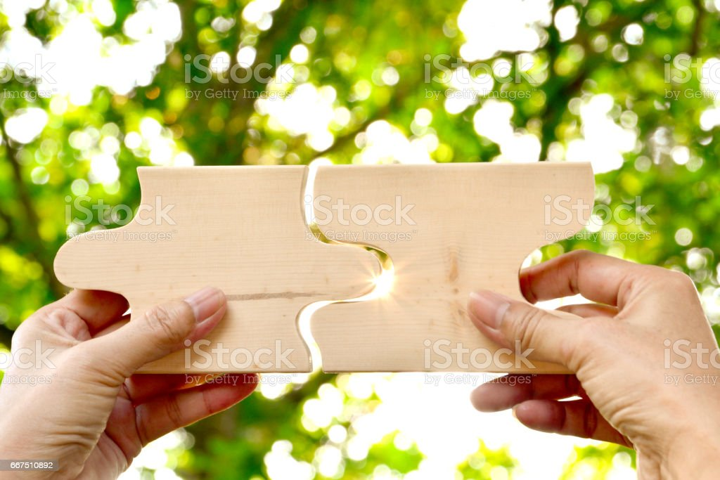 hand holding wood jigsaw piece texture pattern on nature background foto stock royalty-free