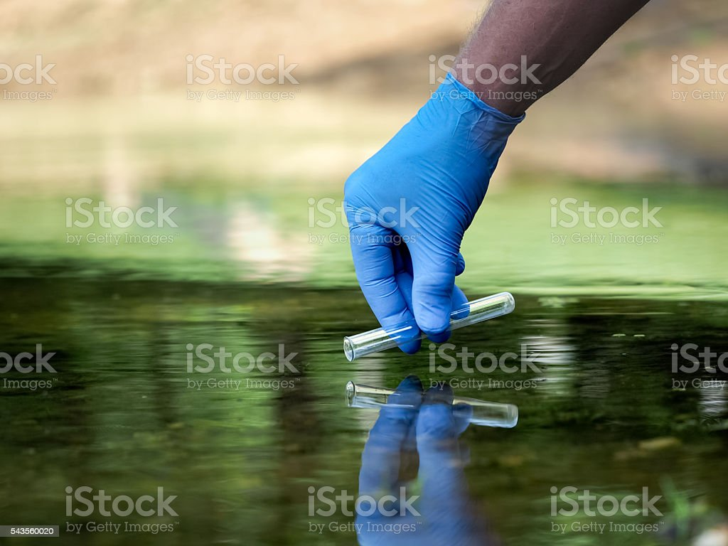 Hand in glove collects water in a test tube stock photo
