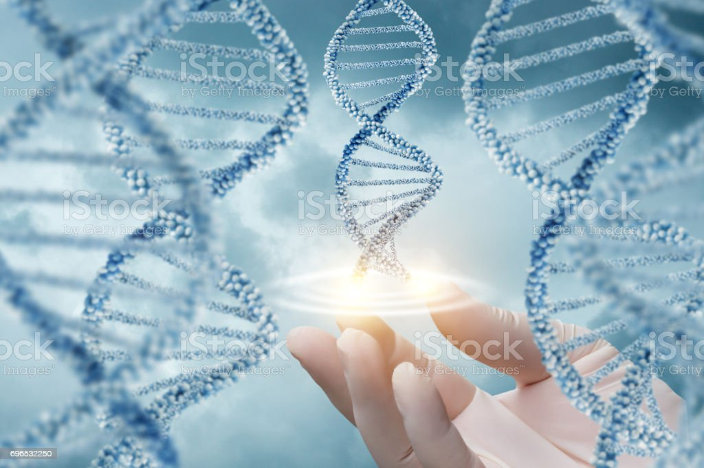 Hand in glove supports of the DNA molecule. stock photo
