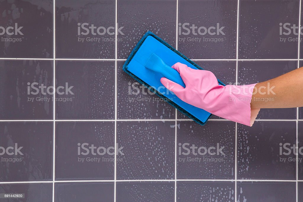 The Art of Mastering Janitors