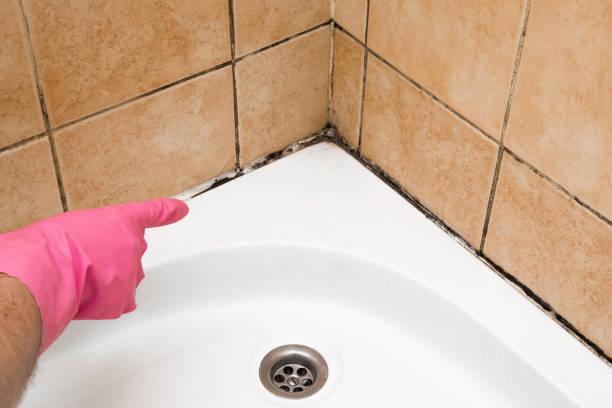 hand in beschermende handschoen rubber wijzend naar de schimmel in de douche cabine hoek. problemen en oplossingen concept. - meeldauw stockfoto's en -beelden