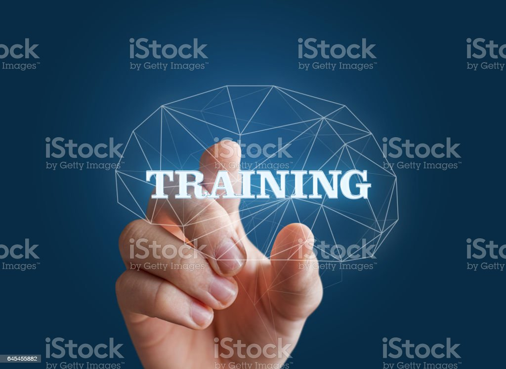 Hand insert the word training in the brain. stock photo