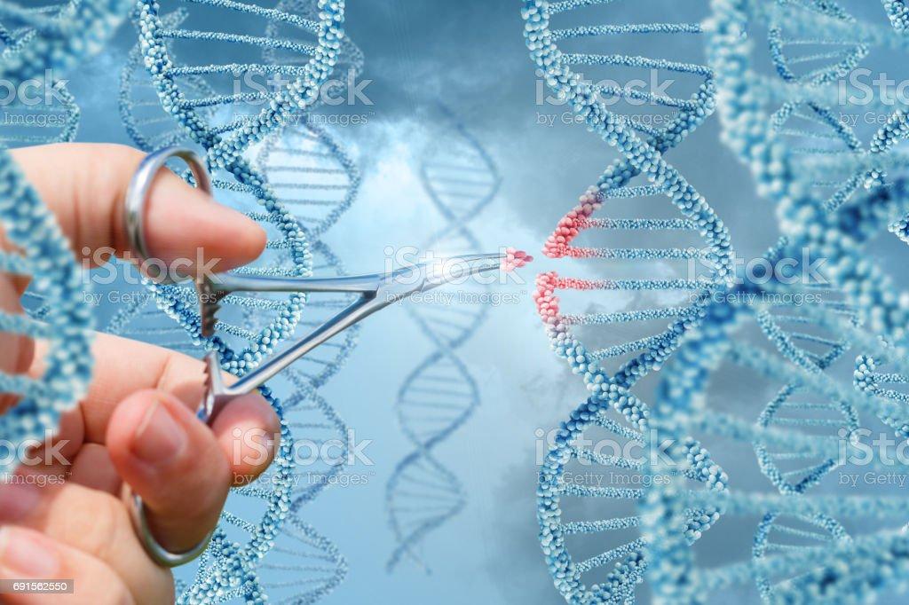 Mano inserta una molécula de ADN. - foto de stock