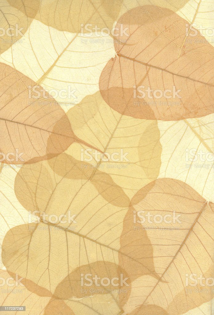 Hand made leaf paper royalty-free stock photo