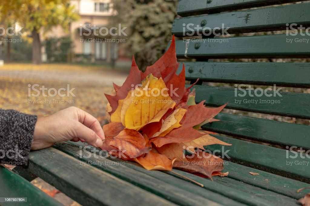 Hand Making a Leaf Composition - foto stock