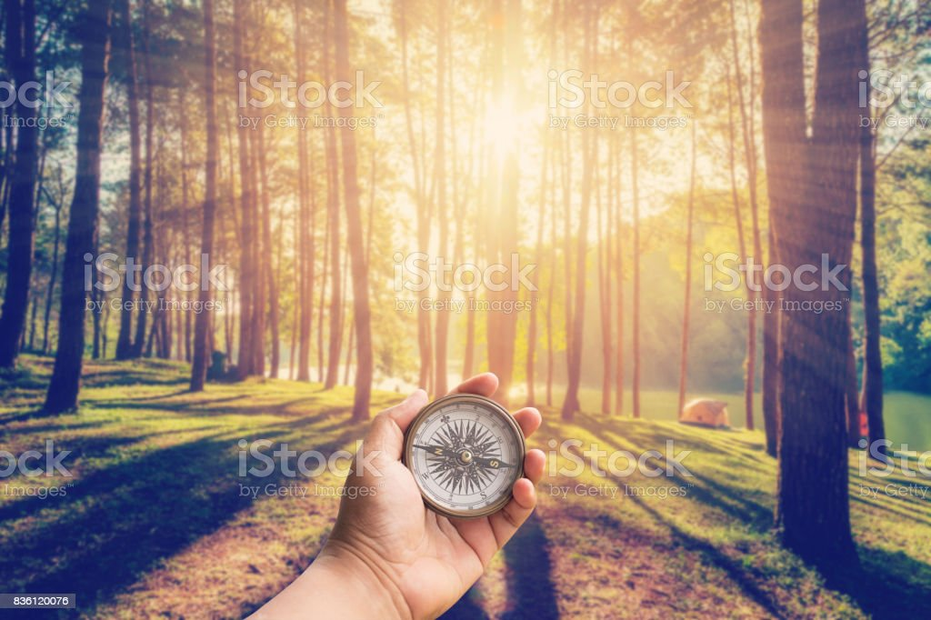 Hand man holding compass at larch forest with sunlight and shadows at sunrise with vintage scene. stock photo