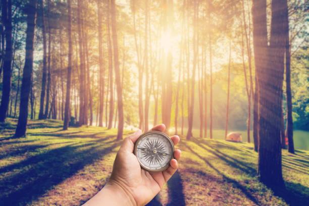 hand-mann, der kompass im lärchenwald mit sonnenlicht und schatten bei sonnenaufgang mit vintage-szene hält. - überleben stock-fotos und bilder