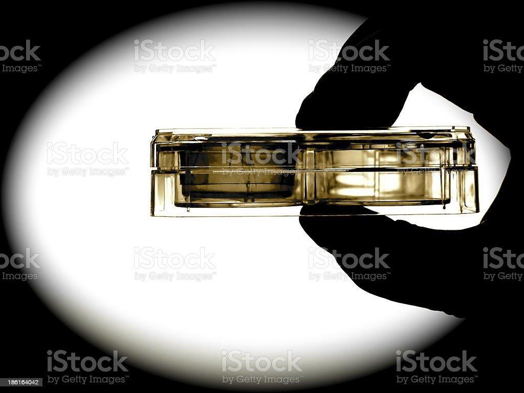 Hand mit ZellkulturPlatte, Schale laboratory cell culture royalty-free stock photo