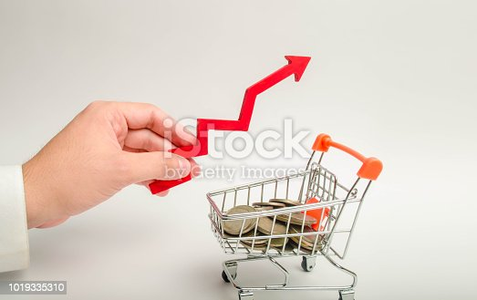istock Hand of a businessman with a red arrow pointing up over a wheelbarrow with coins. concept of economic growth, the rise of purchasing power. Inflation, investments. Marketing, trade, Internet commerce. 1019335310