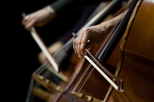 Hand of a man playing the contrabass