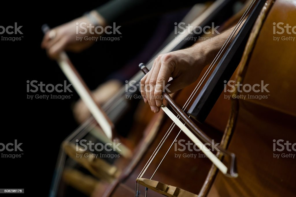 Hand of a man playing the contrabass stock photo