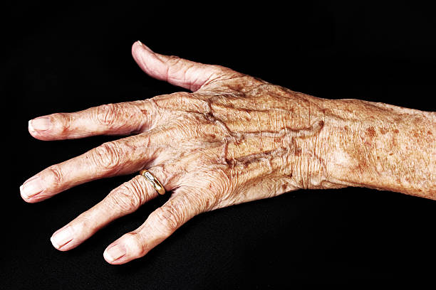 hand of an old woman stock photo