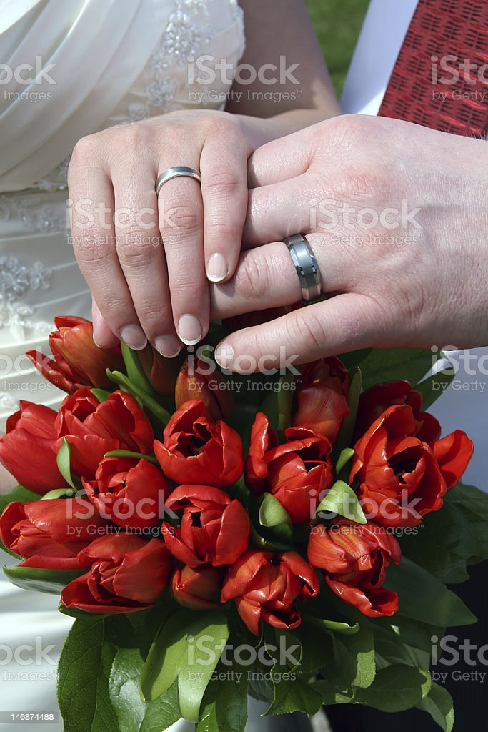 Hand of groom and bride with wedding rings royalty-free stock photo
