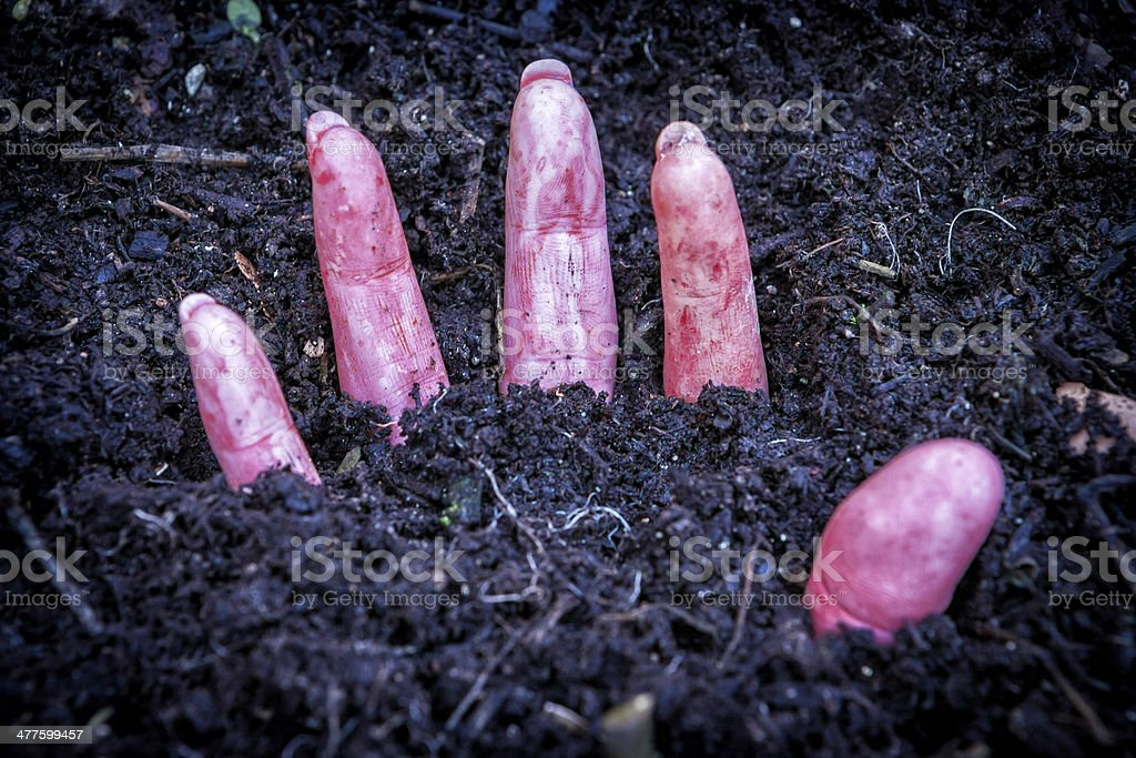 hand of murdered woman buried under the ground stock photo