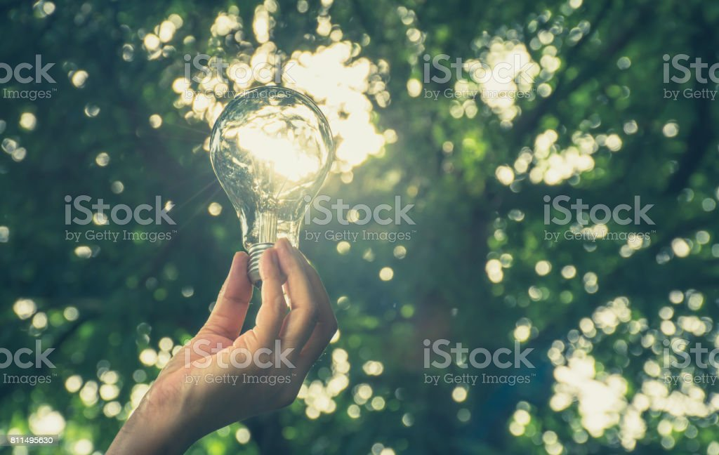 Hand of person holding light bulb for idea or success or solar energy stock photo