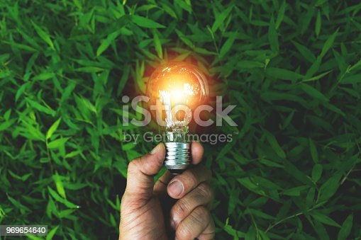 hand of person holding light bulb on the grass for solar,energy,idea concept.