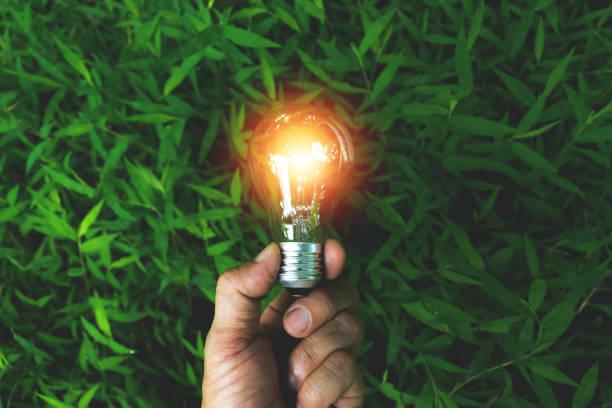 hand of person holding light bulb on the grass for solar,energy,idea concept. - rifiuti zero foto e immagini stock