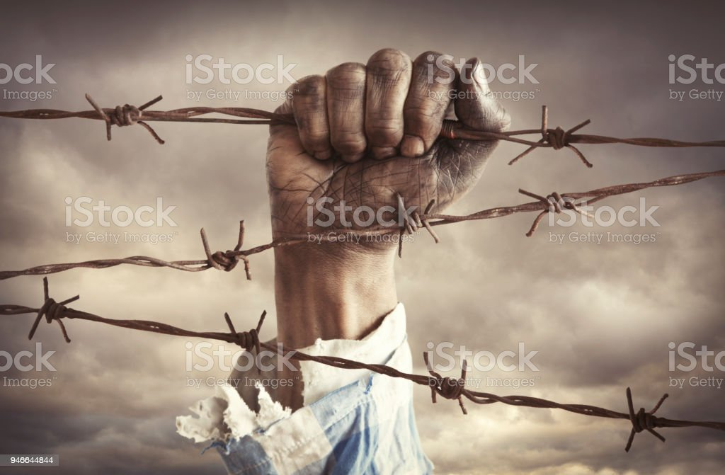 Hand Of Refugee Holding Barbed Wire Stock Photo - Download Image Now