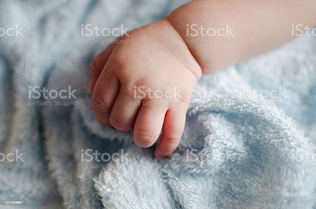 hand of the baby stock photo