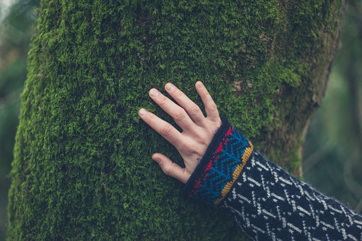 Hand of woman on tree with moss