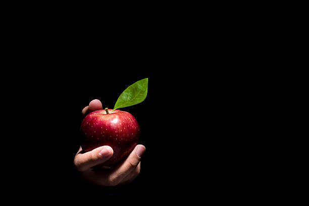 Hand offering an apple. Hand offering a red apple on a black background. temptation stock pictures, royalty-free photos & images