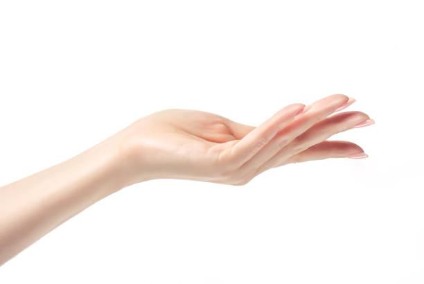 手を提供しています, または何かを示します。美しい女性の手のクローズ アップ画像。 - 人間の手 ストックフォトと画像