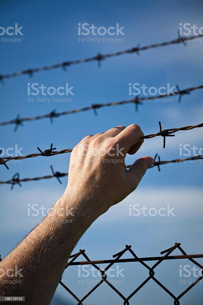 Hand on barbed wire royalty-free stock photo