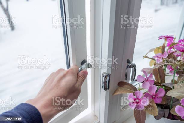 Photo of Hand opening window with flower decoration